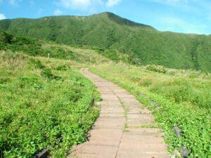 青青草原步道